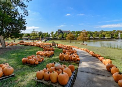 Shreveport Pumpkin Patch Halloween Events