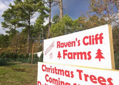 Christmas Wreaths Trees Supplies Near Shreveport Sign