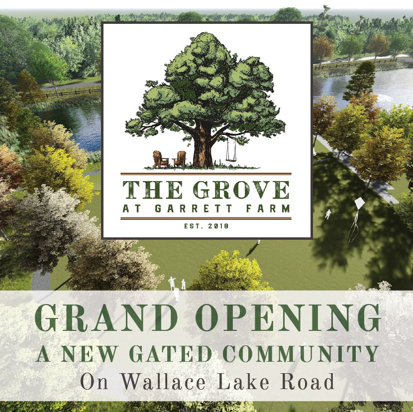 The Grove Grand Opening Website Thumbnail
